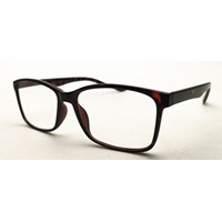 Reading Glasses Pappea Tortoise Single Vision